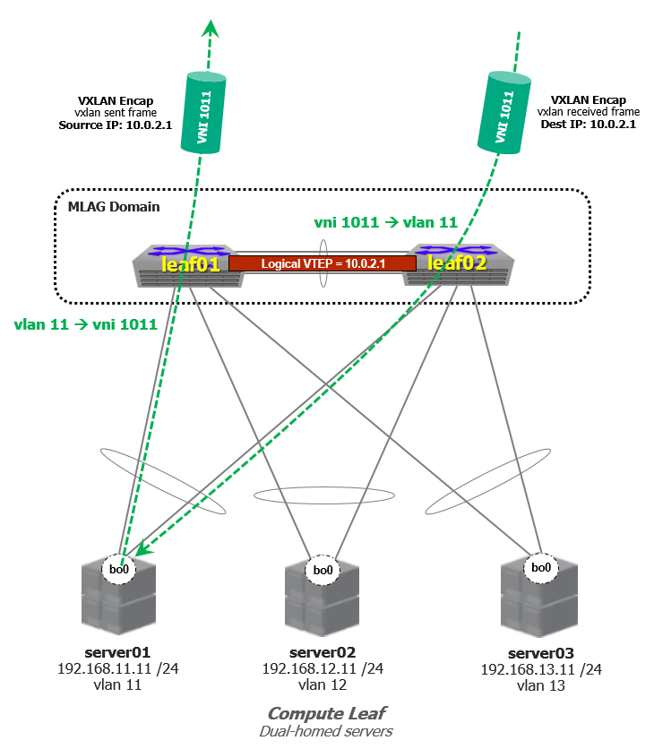 Arista Layer-3 Leaf-Spine Fabric with VXLAN HER: Lab Part 4